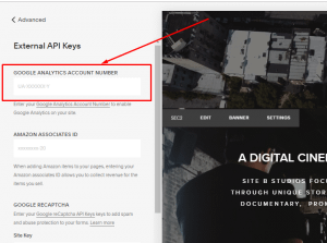 How to add google analytics to squarespace